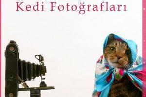 tarihteki ilk kedi fotograflari
