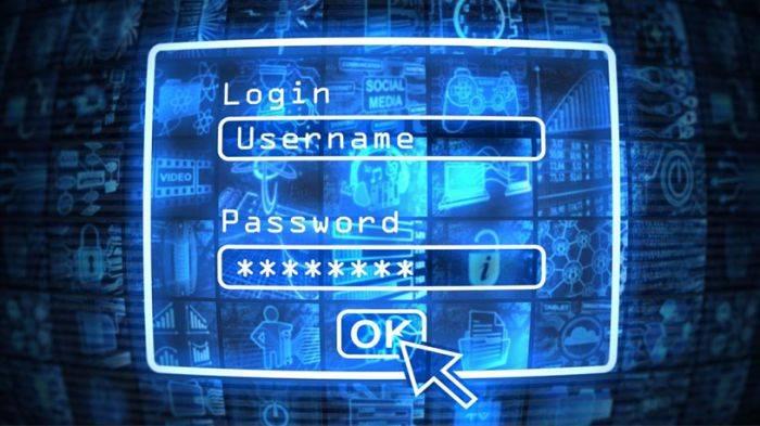 siber guvenlik