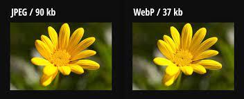 webp formatının avantajları nelerdir